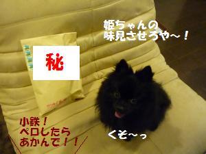 1022-4_convert_20081023075556.jpg