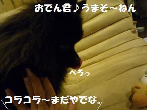 1022-8_convert_20081023075807.jpg