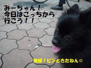 1025-2_convert_20081025204547.jpg