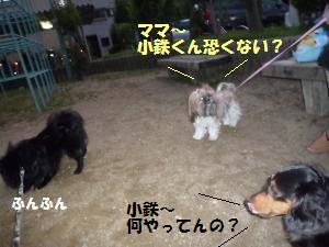 1027-1_convert_20081027181735.jpg