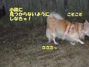 1027-3_convert_20081027181842.jpg
