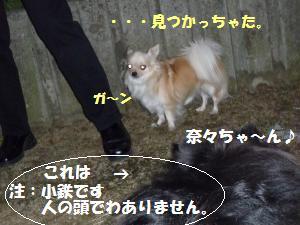 1027-4_convert_20081027181916.jpg