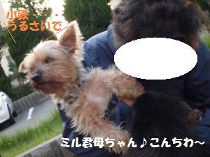 1028-1_convert_20081029003705.jpg
