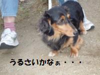 1028-2_convert_20081029003843.jpg