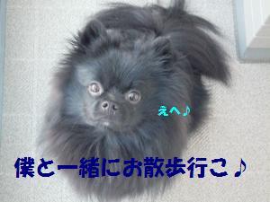 1029-4_convert_20081030015719.jpg