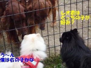 1102-13_convert_20081103143826.jpg