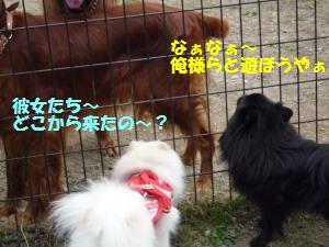 1102-14_convert_20081103143905.jpg