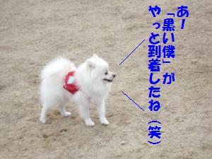 1102-24_convert_20081103144431.jpg