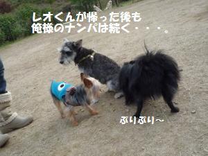 1102-30_convert_20081103144910.jpg