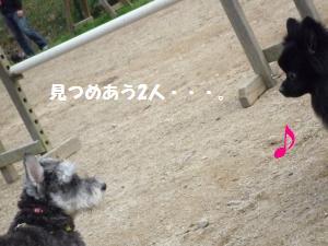 1102-32_convert_20081103145031.jpg