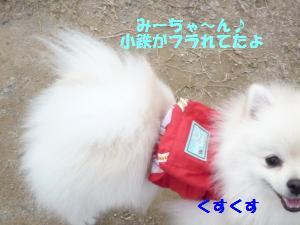 1102-7_convert_20081103143440.jpg