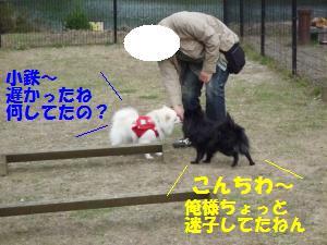 1102-9_convert_20081103143600.jpg