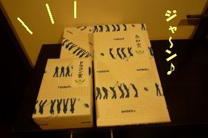 1103-1_convert_20081105224825.jpg
