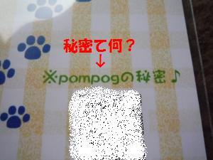 1109-10_convert_20081111200625.jpg