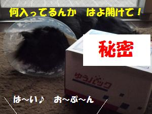 1109-2_convert_20081111200117.jpg