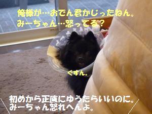 1110-4_convert_20081111201340.jpg