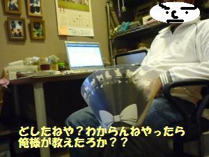 1116-9_convert_20081118223520.jpg