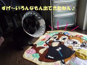 1121-17_convert_20081121210821.jpg