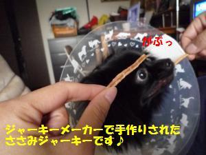 1121-3_convert_20081121205913.jpg