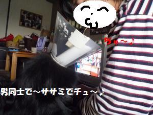 1121-4_convert_20081121205948.jpg