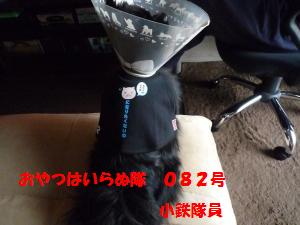 1121-8_convert_20081121210249.jpg