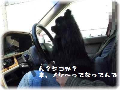安全運転2