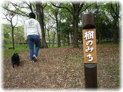 大泉緑地-3