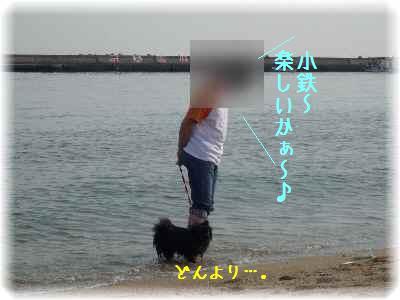 初・海11