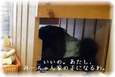 お姫様の訪問11