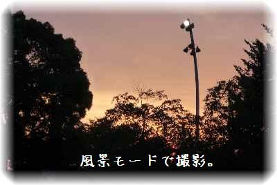 一緒に鶴見緑地7