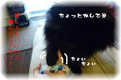 ミセスの愛2