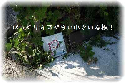 石釜ピザ1