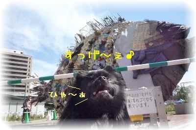 水都大阪2009-2