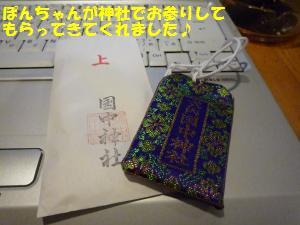 P1000906_convert_20081105225756.jpg