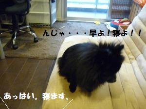 P1010085_convert_20081126024802.jpg