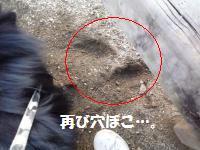 P1010114_convert_20081127030549.jpg