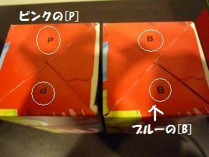 P1010154_convert_20081202010047.jpg