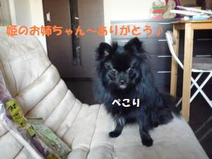 P1010158_convert_20081203021747.jpg