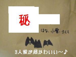 P1010221_convert_20081218123508.jpg