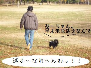 P1010249_convert_20081221143559.jpg