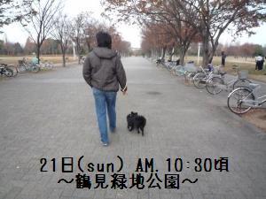 P1010286_convert_20081222144930.jpg