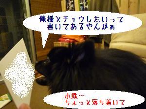 P1010301_convert_20081225104044.jpg