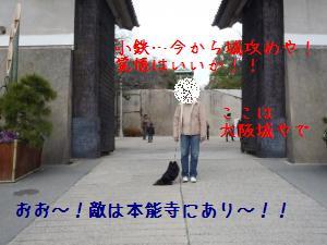P1010366_convert_20090105001726.jpg