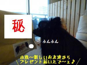 P1010432_convert_20090117182819.jpg