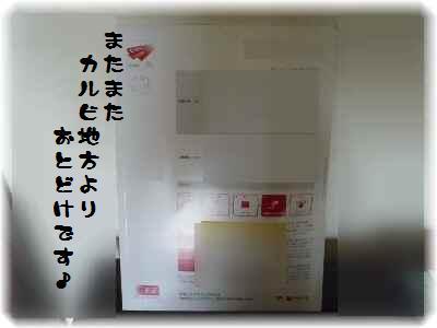 P1020658(1).jpg