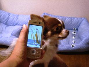 20070717184801.jpg