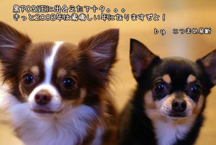 コピー ~ 画像 010