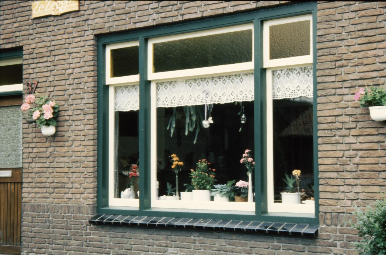 オランダの窓#2