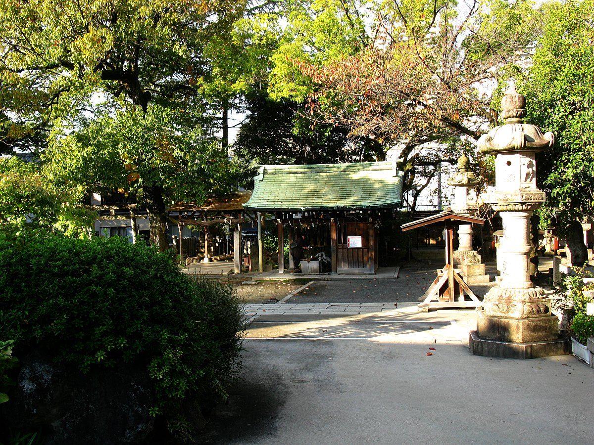 2011_11_24 009