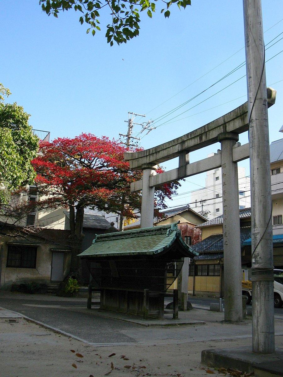 2011_12_16 013